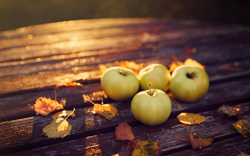 En forme cet automne grâce à ces aliments !