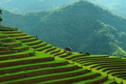 L'Asie: destination phare en 2016!